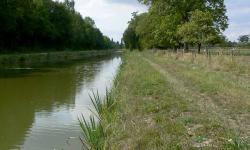 Rehabilitation of the banks of the Canal d'Orléans